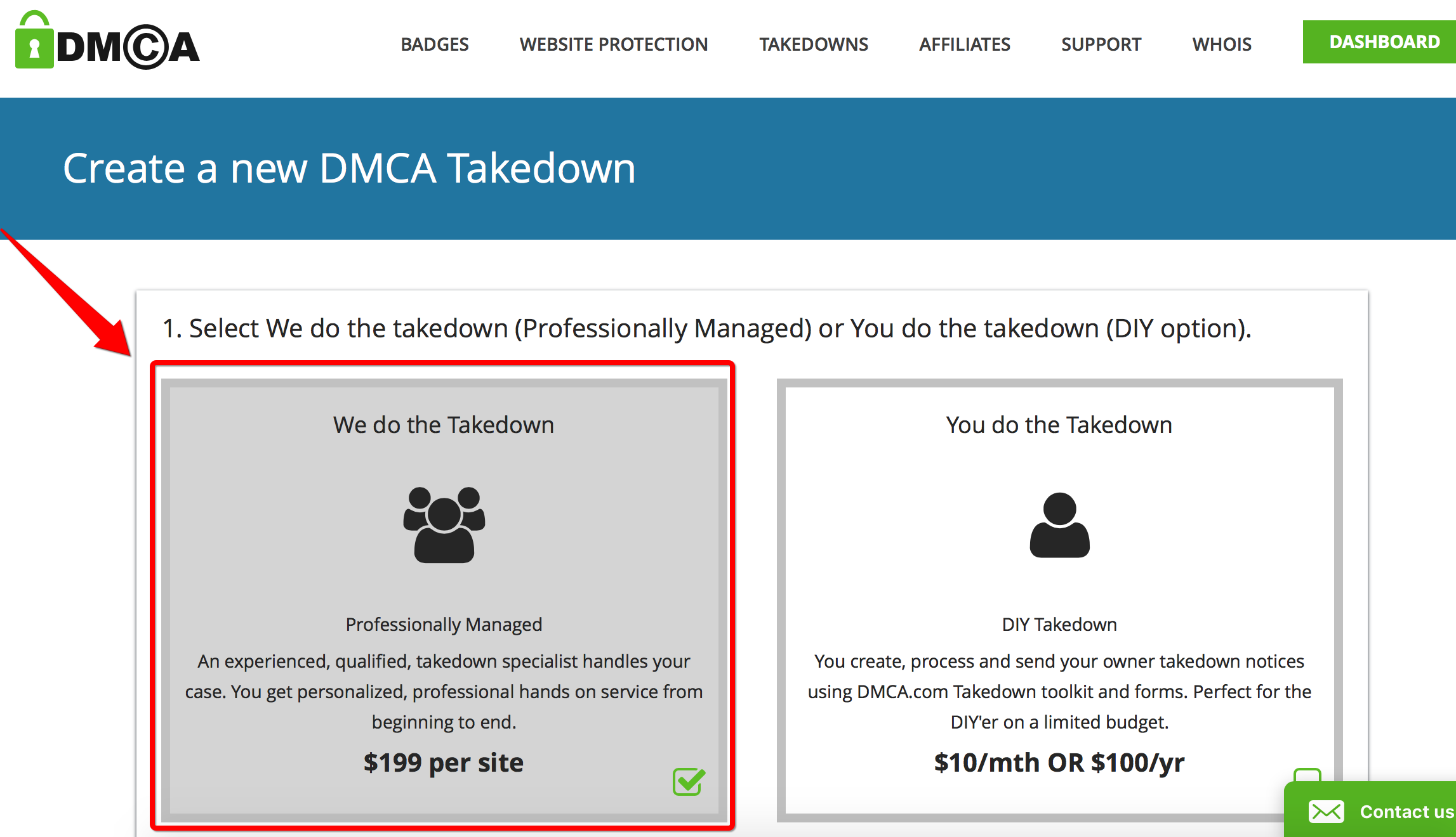 image of DMCA professional take down offer page